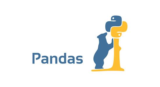 pandas icon