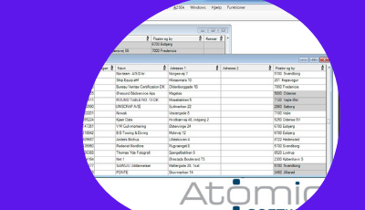 atomic software ERP