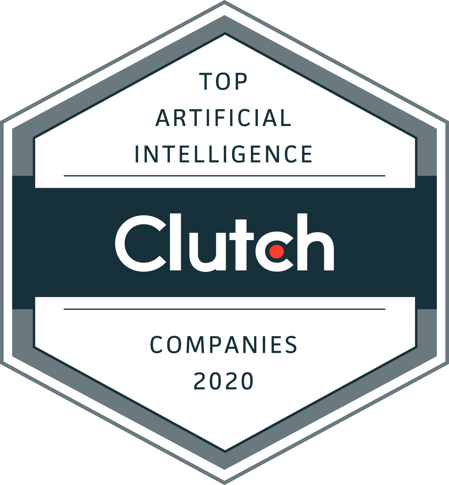 Artificial_Intelligence_Companies_2020 (10)